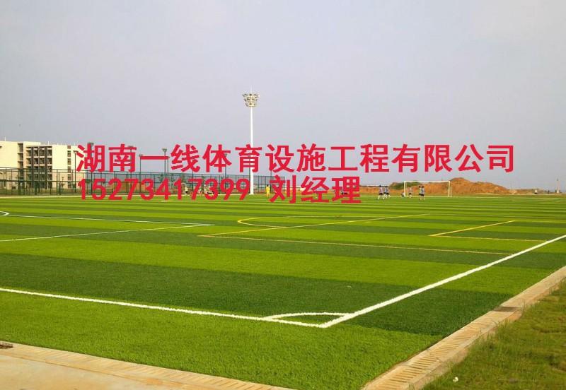 衡阳足球人造草铺贴 专业施工单位湖南一线体育设施工程有限公司