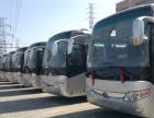上海市租车 机场接送 商务旅游包车 企业班车 优惠中