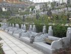 杭州慈福园陵园位置