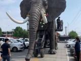 机械大象出租 机械大象出租厂家 载人机械大象租赁 河淼模型