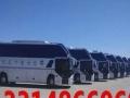 专业出租旅游客车及各种商务车