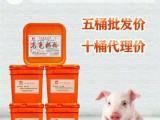 哺乳母豬管理