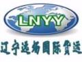 辽宁远炀国际货运 国际快递 国际货运 专家级服务 超低价格