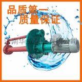 高温熔盐泵 GY50-200熔盐液下泵