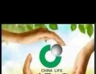 中国人寿 是您放心的选择