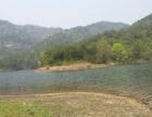 湖北东部大型水库中的半岛和全岛招商开发或出租