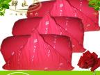 羽绒被专柜正品鸭绒被优级白鸭绒被(白鸭绒净重3.6斤)