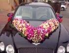 婚庆租车 主婚车 副婚车 摄影车 各种婚车车队出租
