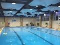 出售方大会馆游泳票