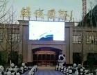 西宁华逸承接各种大型展览道具 熊猫 大白 机器猫