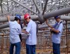 天门市钢结构厂房安全检测鉴定电话 全国先进检测鉴定单位
