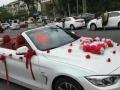 宝马专业婚车车队,专业车队