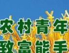 【小商品加盟】农村致富好项目长期有活
