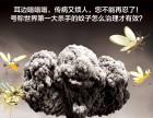 上海灭白蚁公司工厂灭鼠消杀蟑螂公司