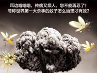 上海白蚂蚁防治电话专业除四害公司杀臭虫