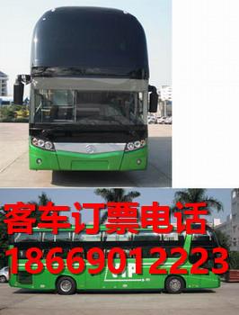 欢迎致电泉州至湛江汽车客车多长时间@13701455158专线直达√