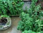 上海短租房, 房东直租, 经济 安全