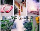 海南专业婚礼跟拍 会议摄影摄像 旅拍 全家福合照