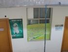 汉中贝贝宠物医院
