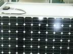 主营天阳能组件80W-250W