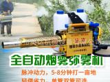农用脉冲式弥雾机 小型大棚烟雾机 双化油器弥雾机