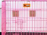 新买的粉色猫笼 猫窝不让养转让了