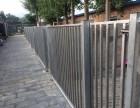 望京新城 长期提供猫儿狗儿寄养 长期寄养散养托管