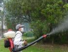 消杀蟑螂 老鼠、白蚁、苍蝇 蚊子跳蚤 臭虫