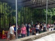 惠州农家乐结合拓展休闲游