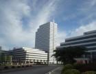 保税区行政大厦11楼出租