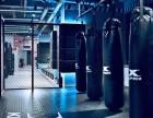 昆仑决格斗健身俱乐部,格斗,自由搏击,拳击,MMA,综合格斗