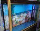 鱼乐水族承接定制鱼缸