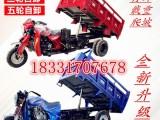 自卸三轮五轮摩托车全新货运农用燃油翻斗摩托车信息