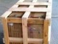 咸阳专业打木架木箱