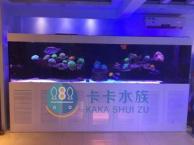 深圳地区定制鱼缸工程 水族造景设计 维护
