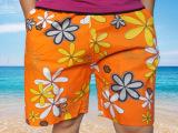 2014年新款桃皮绒男裤 男式速干沙滩裤印花休闲裤五分裤一件起批