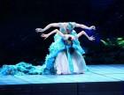 广州雀之恋表演 广州特色高端表演节目演出