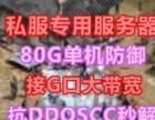 厦门/东莞双线 集群240G秒解 百兆带宽 G口接