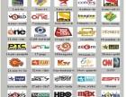 IHOME2 爱家2日本iptv免费软件,bs日本网络电视