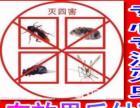 全重庆各种场所:灭老鼠、灭蟑螂、灭白蚁、灭飞虫