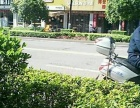 抚琴大道(检查院对面) 商业街卖场 40平米