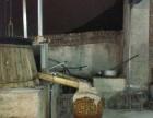 正宗布依族传统米酒销售及代加工