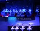广州唯美星光芭蕾表演 广州特色创意表演节目
