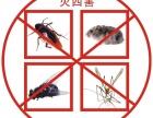 安全白蚁防治,灭白蚁,灭蟑螂,灭老鼠,厦门专业公司