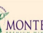 蒙特斯葡萄酒 蒙特斯葡萄酒加盟招商