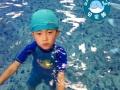 湖州新生儿护理_刚出生婴儿游泳教程
