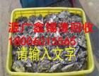 福州回收废锡渣,废铜废铁废钢等高价回收,长期回收