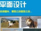 廣州平面設計培訓,logo設計,PS軟件培訓