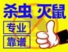 南京神捕专业杀蟑螂 灭老鼠 灭白蚁 除害虫 当场见效
