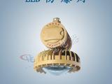 HBD9620LED防爆路灯,防爆高效节能LED路灯,圆形LED